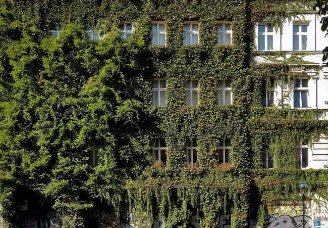 green facade in Kreuzberg - berlininfo guided tours