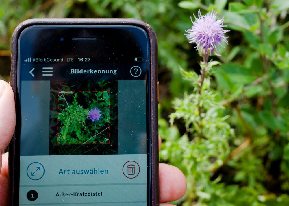 Naturblick App berlininfo